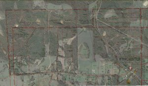 Google Earth image of Fincastle, Texas with plat map overlay.  Click on image to view full size.
